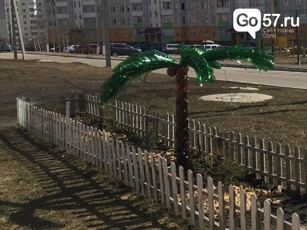 """Как содержатся площадки в Орле: район """"Новая Ботаника"""", фото-11"""