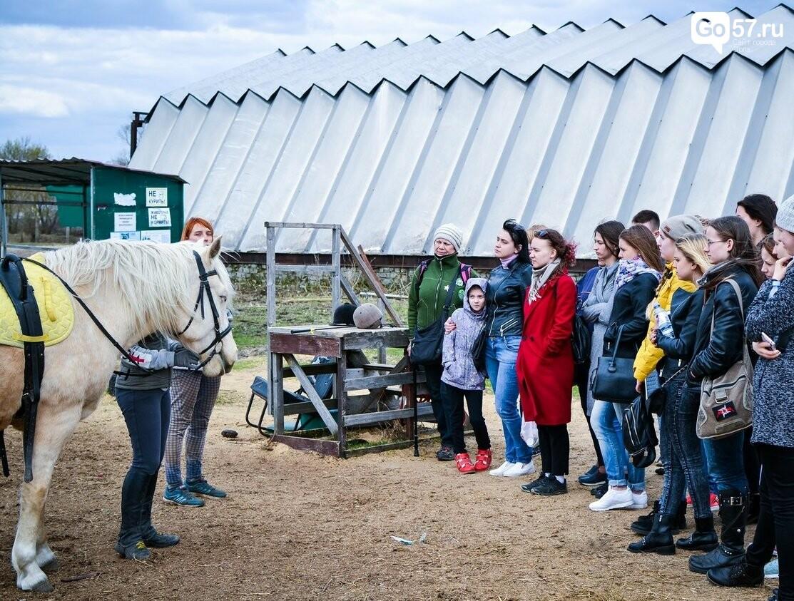 Как конный спорт влияет на оздоровление орловских детей , фото-3