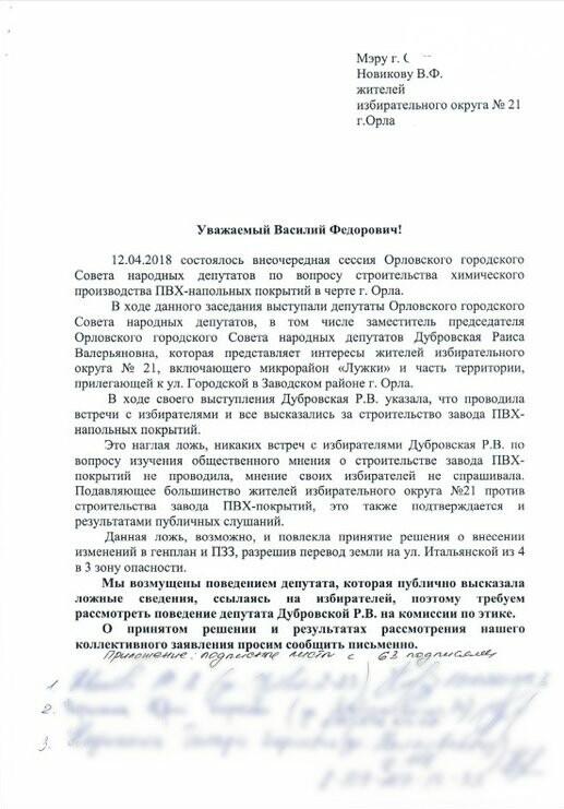 Депутат Раиса Дубровская разочаровала орловцев, фото-1