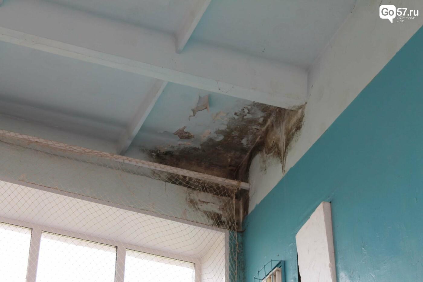 В орловской школе уже несколько лет протекает крыша, фото-3